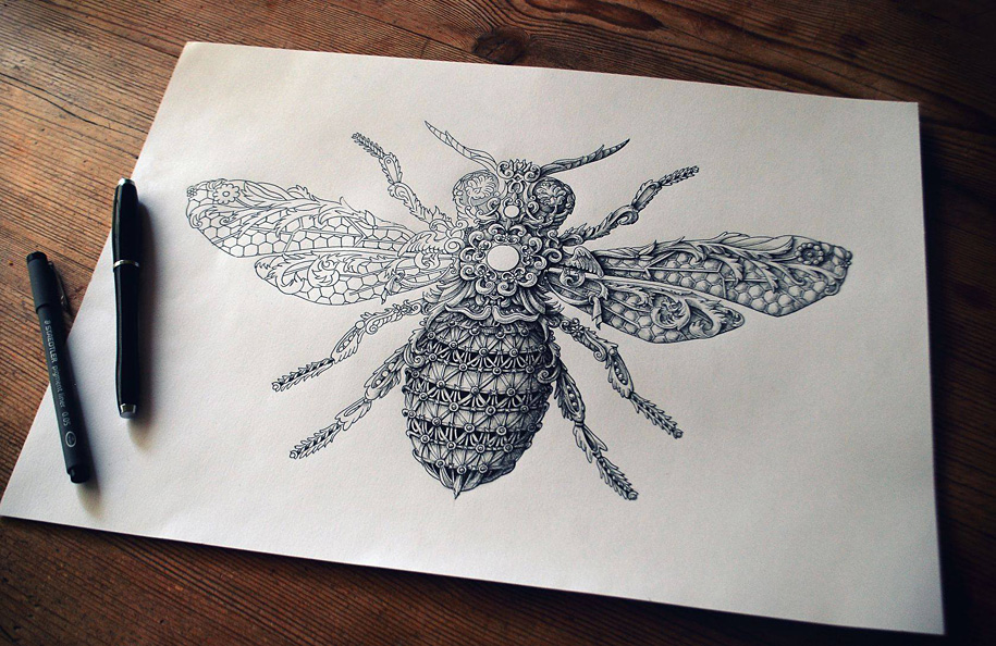 9. little-wings-insect-drawings-alex-konahin-8