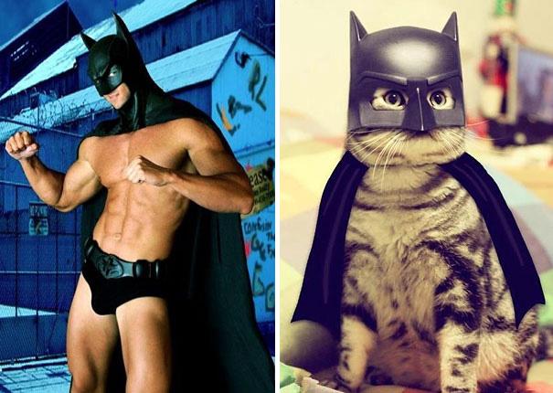 des-hommes-et-des-chatons-men-and-cats-20