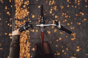 bike november autumn