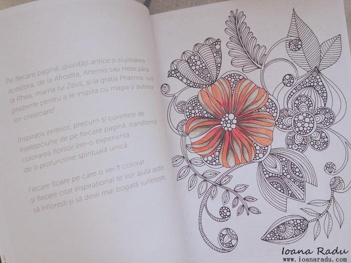 carte de colorat armonii florale 2