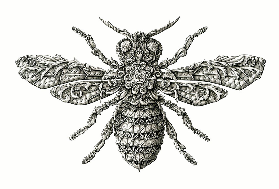 10. little-wings-insect-drawings-alex-konahin-7