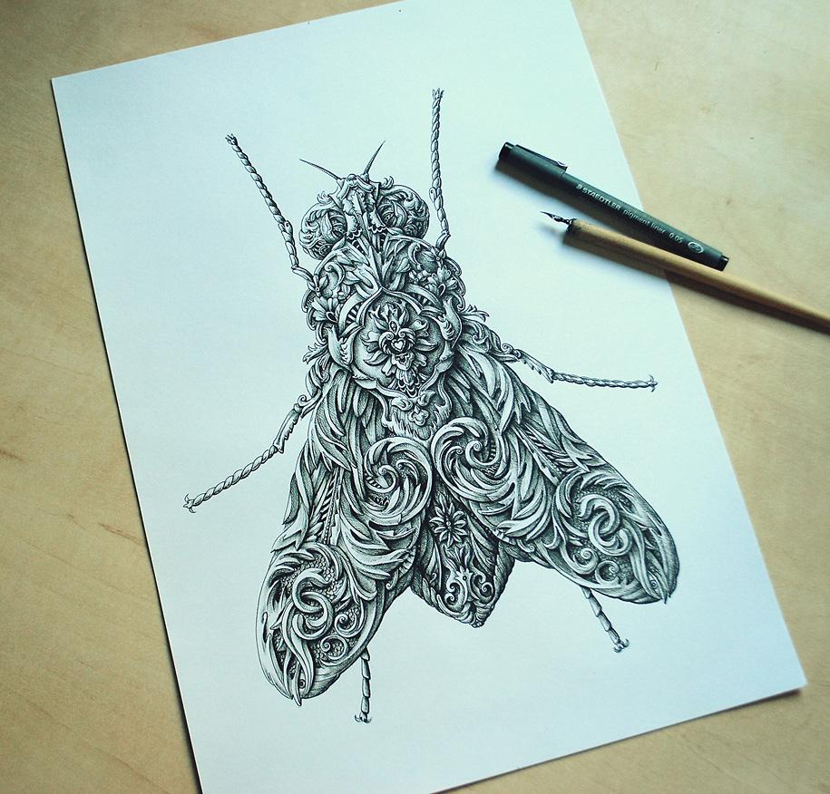 2. little-wings-insect-drawings-alex-konahin-3