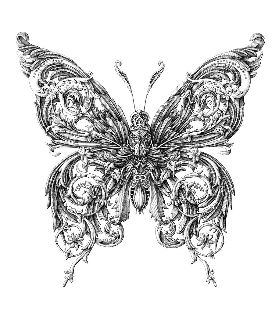 5. little-wings-insect-drawings-alex-konahin-5