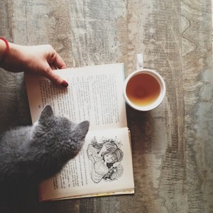 book cat tea reading
