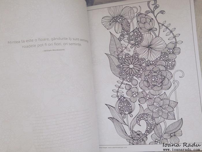 carte de colorat armonii florale 3