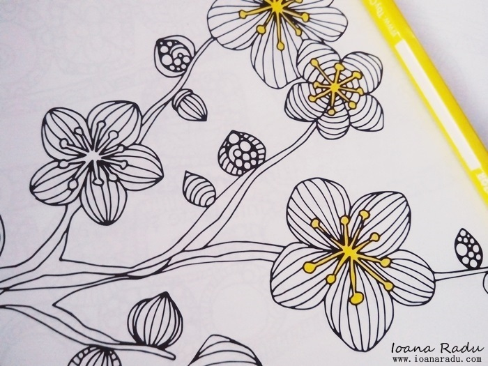 carte de colorat armonii florale