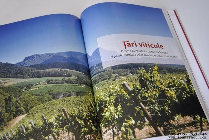 vinul de la strugure in pahar edituracasa 02