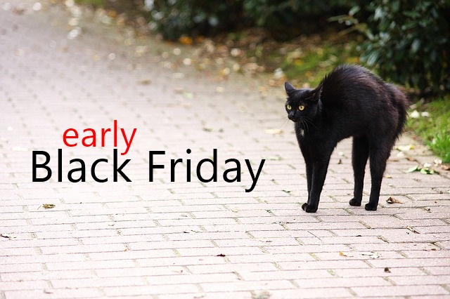 early black friday cat
