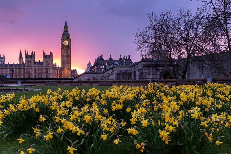 traieste.UK ► platformă dedicată românilor aflați în UK sau care plănuiesc să se mute acolo | anunturi UK