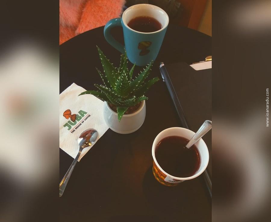 Juba Cafe Targoviste ceai fructe de padure