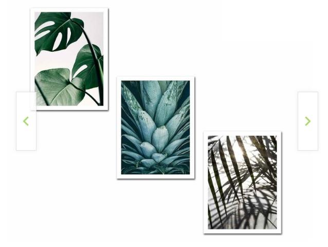 tablouri frunze si plante